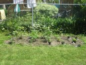 My freshly planted veggie garden, circa 2009.