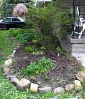 Reshaped front garden - in progress.