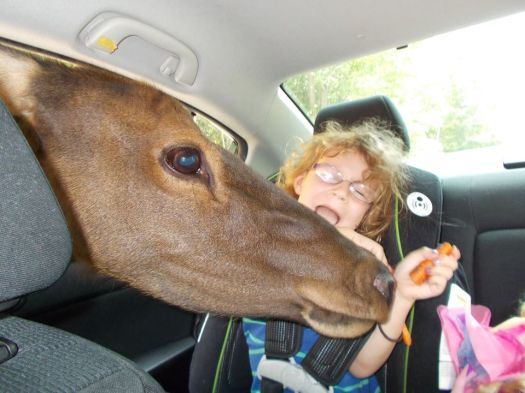 Parenting instinct: take a photo.