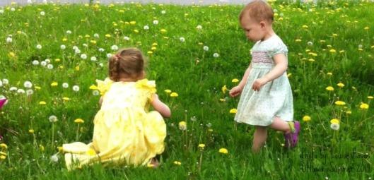 In the grass_crop