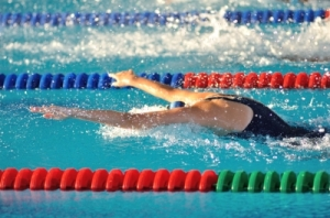 fly_swim