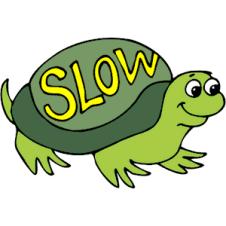 slow-tortoise